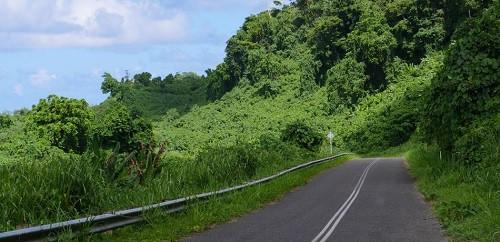 Tài xế xe tải ở Indonesia suýt chết sau khi dùng Google Maps để đi qua vách đá - Ảnh 1.