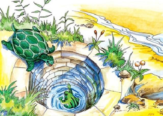 Bạn là ai khi rời khỏi cái giếng cạn của riêng mình? Đừng nông cạn tự biến bản thân thành ếch - Ảnh 1.