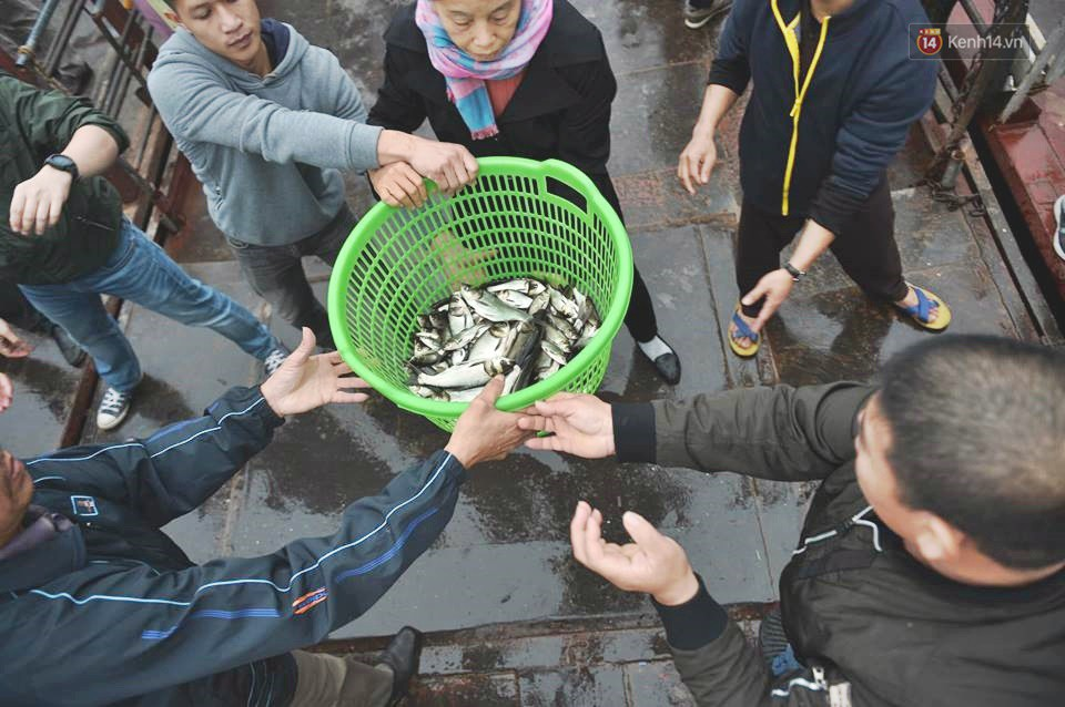 Hà Nội: Gần 10 tấn cá được hàng nghìn phật tử chuyền tay nhau trong lễ phóng sinh đầu năm - Ảnh 3.