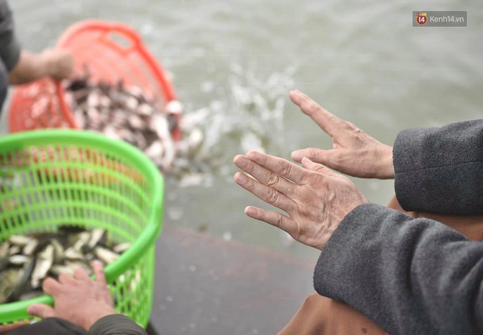 Hà Nội: Gần 10 tấn cá được hàng nghìn phật tử chuyền tay nhau trong lễ phóng sinh đầu năm - Ảnh 5.