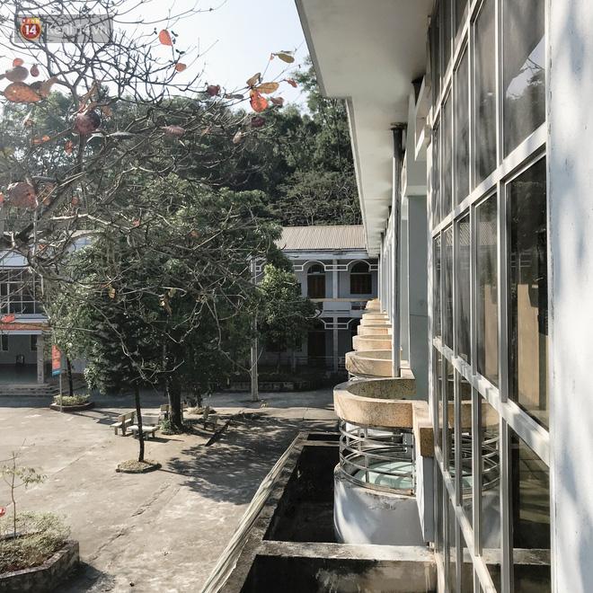 Rủ họp lớp không ai đi, cậu bạn một mình về thăm trường cũ, chụp được bộ ảnh về trường đẹp như phim Hàn - Ảnh 2.