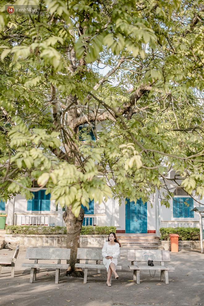 Rủ họp lớp không ai đi, cậu bạn một mình về thăm trường cũ, chụp được bộ ảnh về trường đẹp như phim Hàn - Ảnh 10.