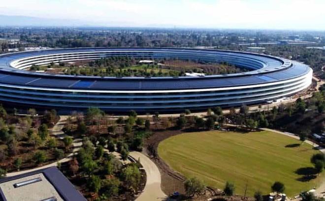 Cơn ác mộng tối tệ của nhân viên hợp đồng ở Apple: Sống trong lo sợ vì có thể bị đuổi bất cứ lúc nào - Ảnh 1.