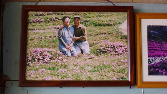 Người đàn ông Nhật Bản dành trọn tình yêu trồng đồi hoa trước nhà suốt 4 năm để tặng vợ mù lòa - Ảnh 11.