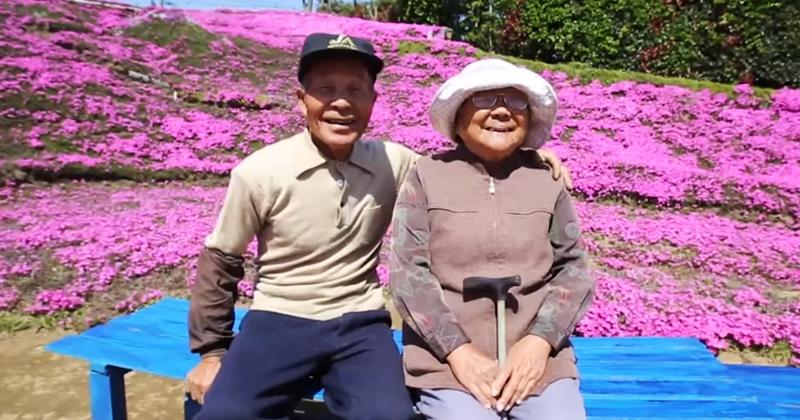 Người đàn ông Nhật Bản dành trọn tình yêu trồng đồi hoa trước nhà suốt 4 năm để tặng vợ mù lòa - Ảnh 9.