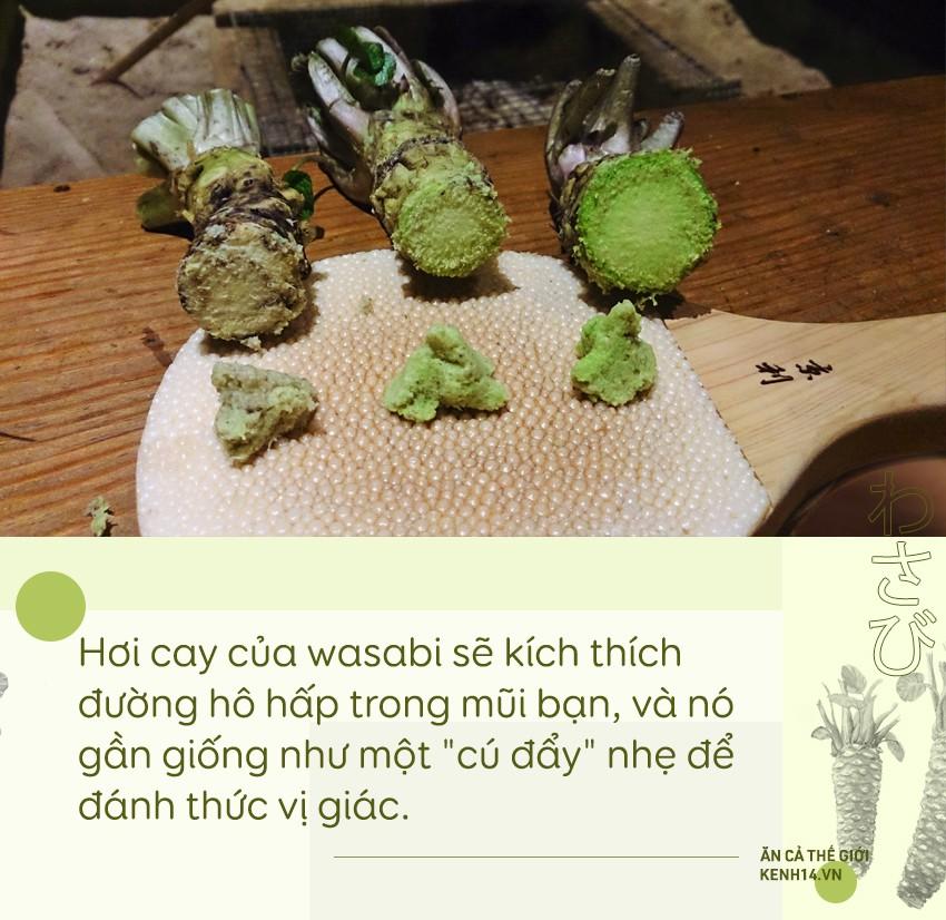 Sự thật đằng sau wasabi: thứ gia vị tưởng chừng như bình dị nhưng lại quý đến mức được người Nhật dùng để nộp thuế thay vàng - Ảnh 3.