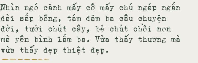 Sài Gòn hăm tám tháng chạp, ngỡ rực rỡ ngỡ bình yên - Ảnh 4.