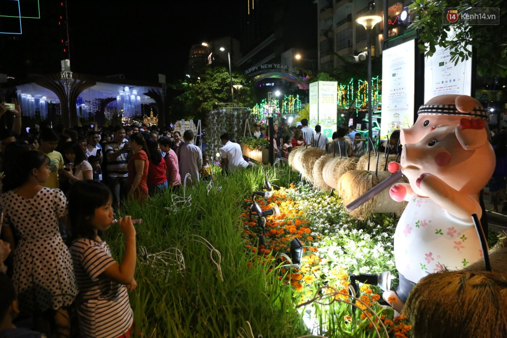 Đường hoa Nguyễn Huệ rực rỡ trong đêm khai mạc, hàng ngàn người chen nhau vào du xuân - Ảnh 15.
