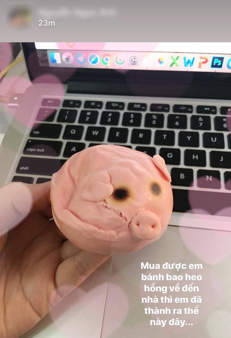 Dân tình thi nhau chụp hình vị thần lợn có hình dáng bất thường vì tai nạn - Ảnh 9.