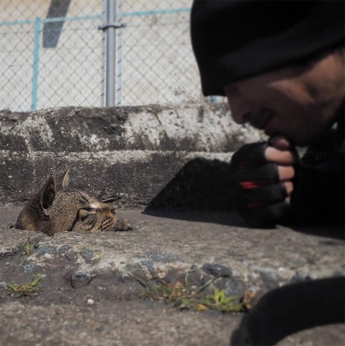 Bị chủ bạc đãi, anh em mèo hoang Nhật kéo nhau xuống cống sống đời an yên - Ảnh 1.