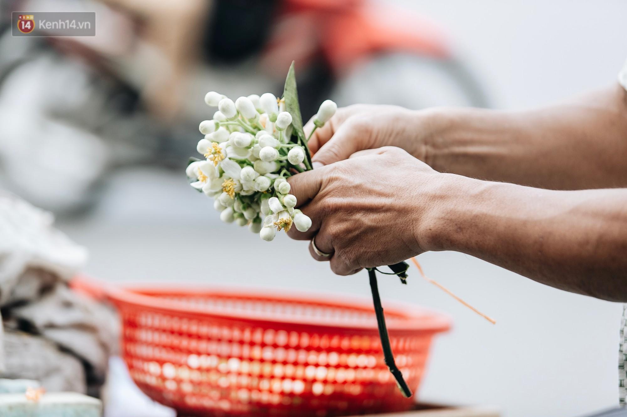 Hoa bưởi tháng 2 theo gió xuống phố Hà Nội, giá lên đến 300.000 đồng/kg vẫn cháy hàng - Ảnh 10.