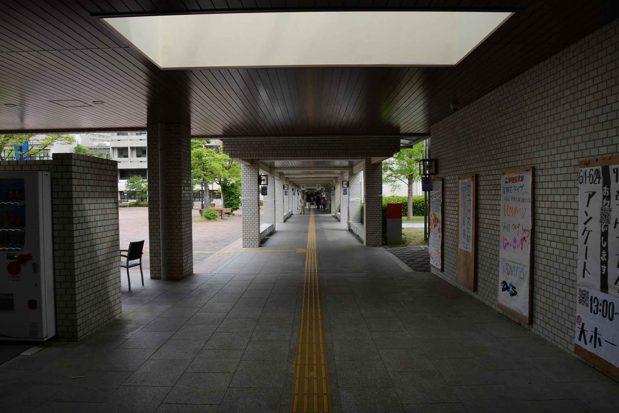 15 phát minh đỉnh cao ở Nhật Bản khiến bạn nhận ra chúng ta và họ dường như cách nhau cả thế kỷ - Ảnh 10.