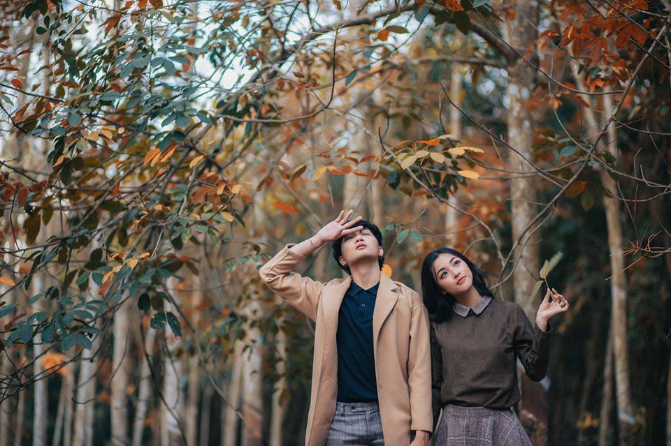 Cực hot: Hướng dẫn đường đi đến rừng cao su lá vàng đẹp như Hàn Quốc cách Sài Gòn chỉ 60km - Ảnh 13.