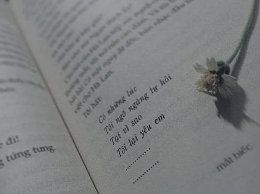 Vì sao Mắt Biếc là bộ phim chuyển thể đáng mong đợi nhất của điện ảnh Việt? - Ảnh 3.