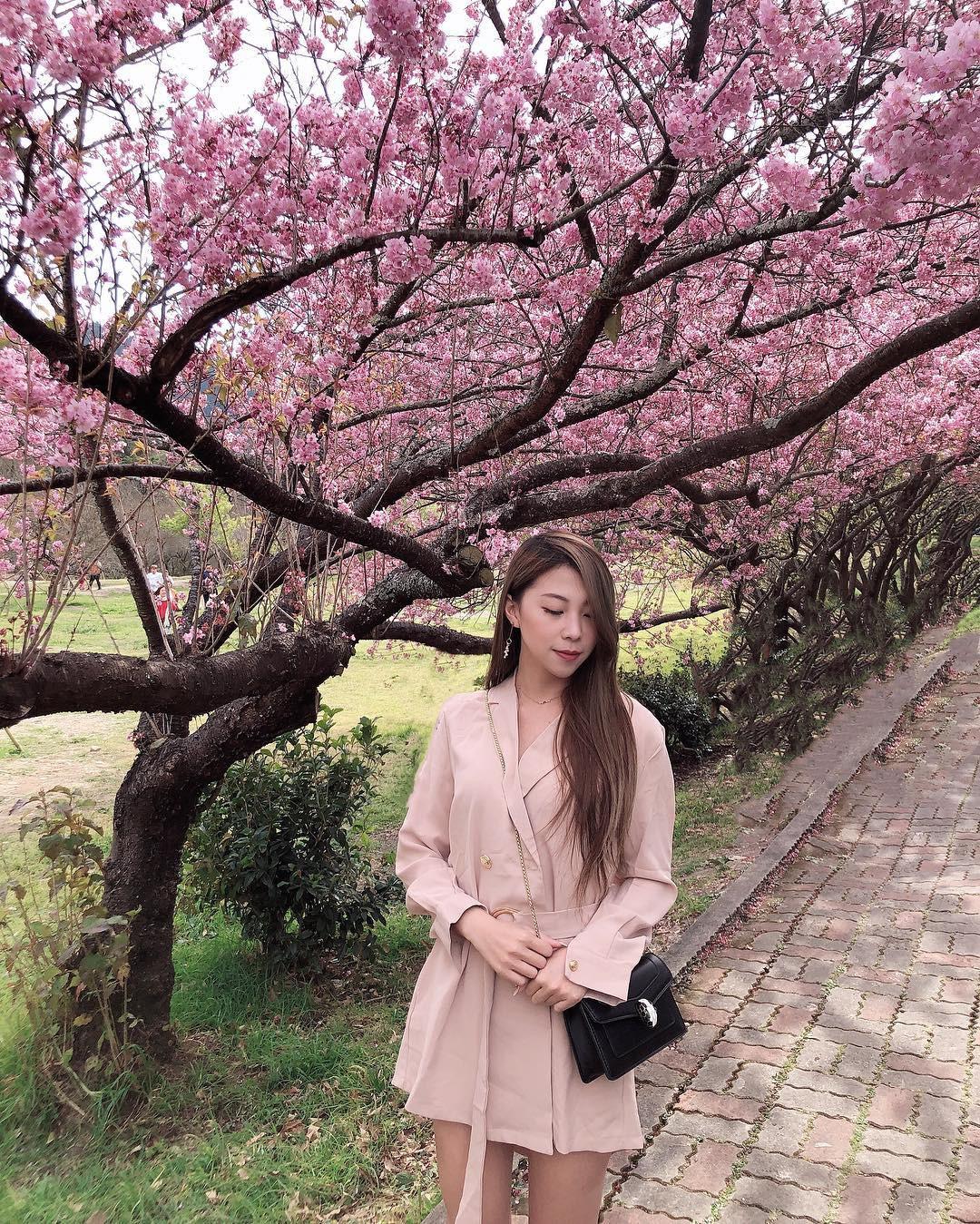 Đài Loan: Hoa anh đào lại nở rợp trời, tạo điều kiện cho trai gái dập dìu chơi xuân - Ảnh 18.