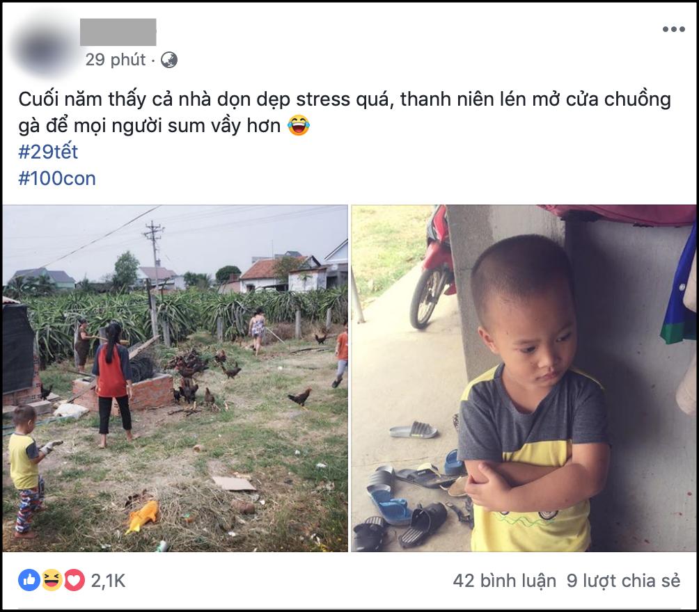 Chuyện hài hước cuối năm: Thấy cả nhà dọn dẹp stress quá, thanh niên 4 tuổi mở chuồng gà hơn 80 con cho mọi người sum vầy hơn - Ảnh 1.