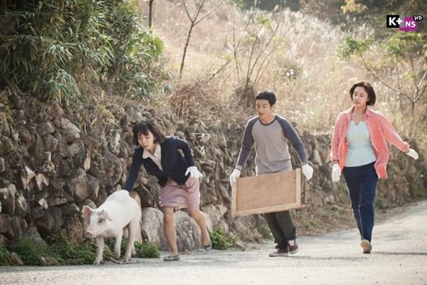 4 chú lợn đáng yêu nhất phim Hàn Quốc: Bất ngờ và cute nhất là chú cuối cùng! - Ảnh 3.
