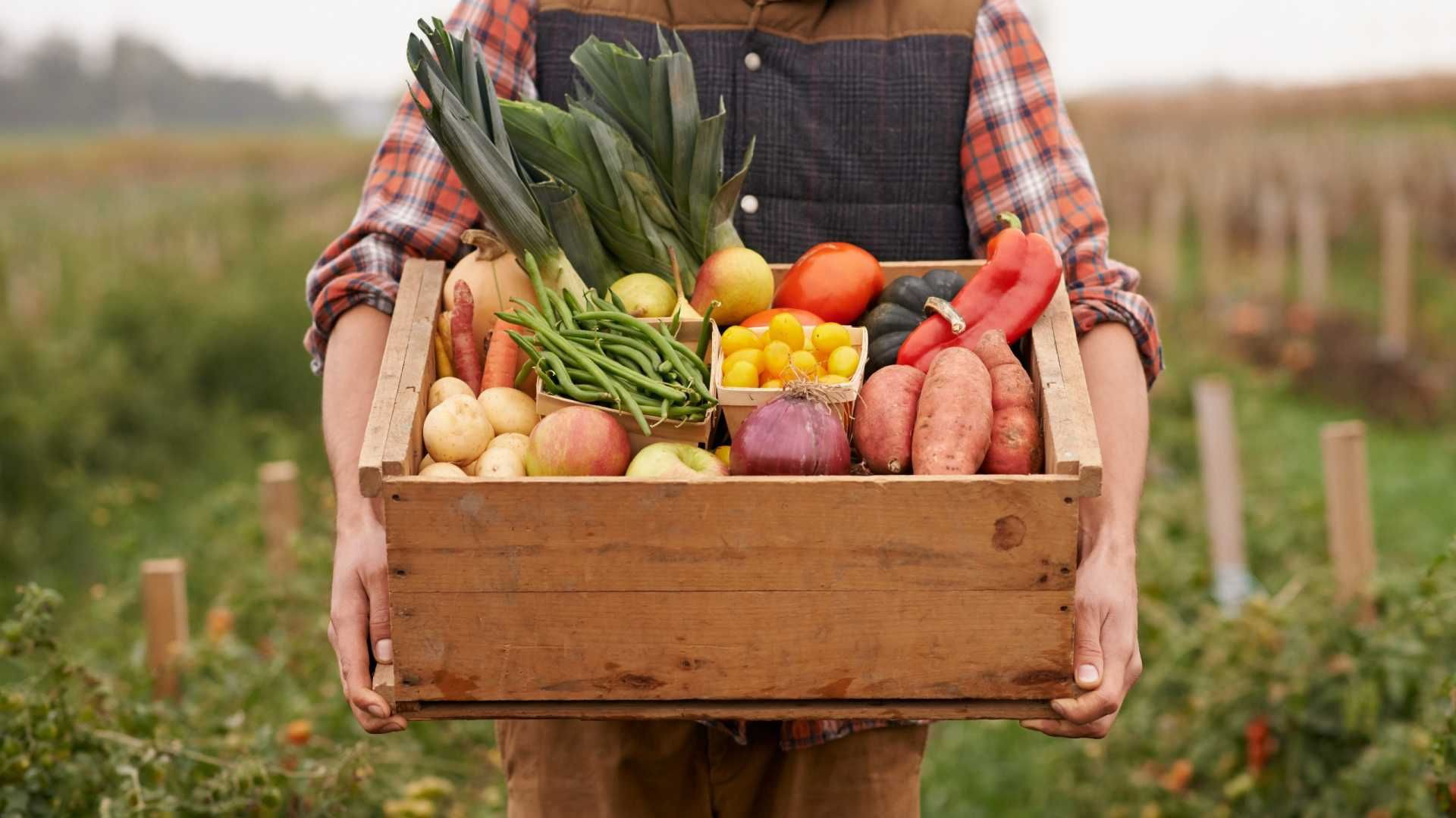Không lo béo mặt sau Tết nếu duy trì những thói quen ăn uống lành mạnh sau - Ảnh 2.