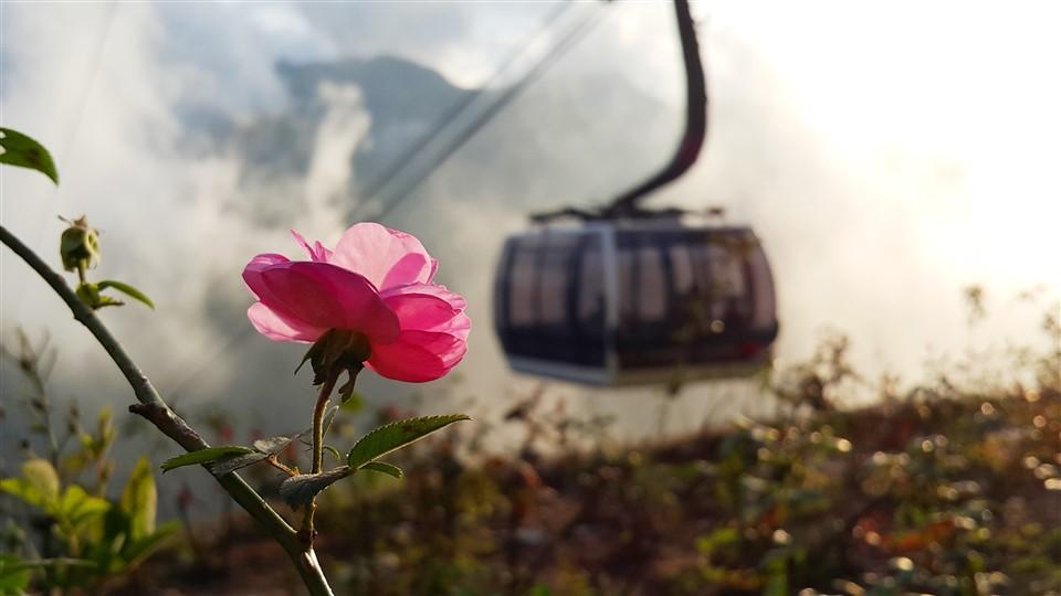 Bắc Bộ Tết nắng nóng, người dân lên Sa Pa du xuân ngắm băng trên đỉnh Fansipan - Ảnh 1.