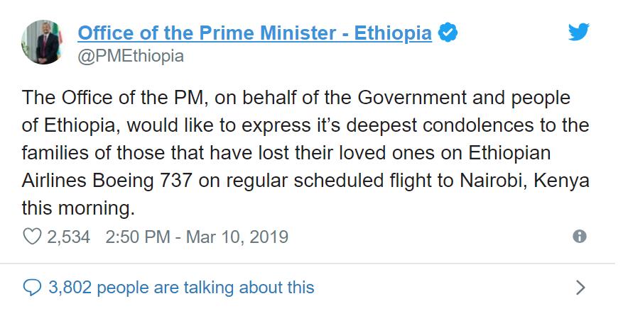 Máy bay rơi ở Ethiopia, toàn bộ 157 người thiệt mạng - Ảnh 3.