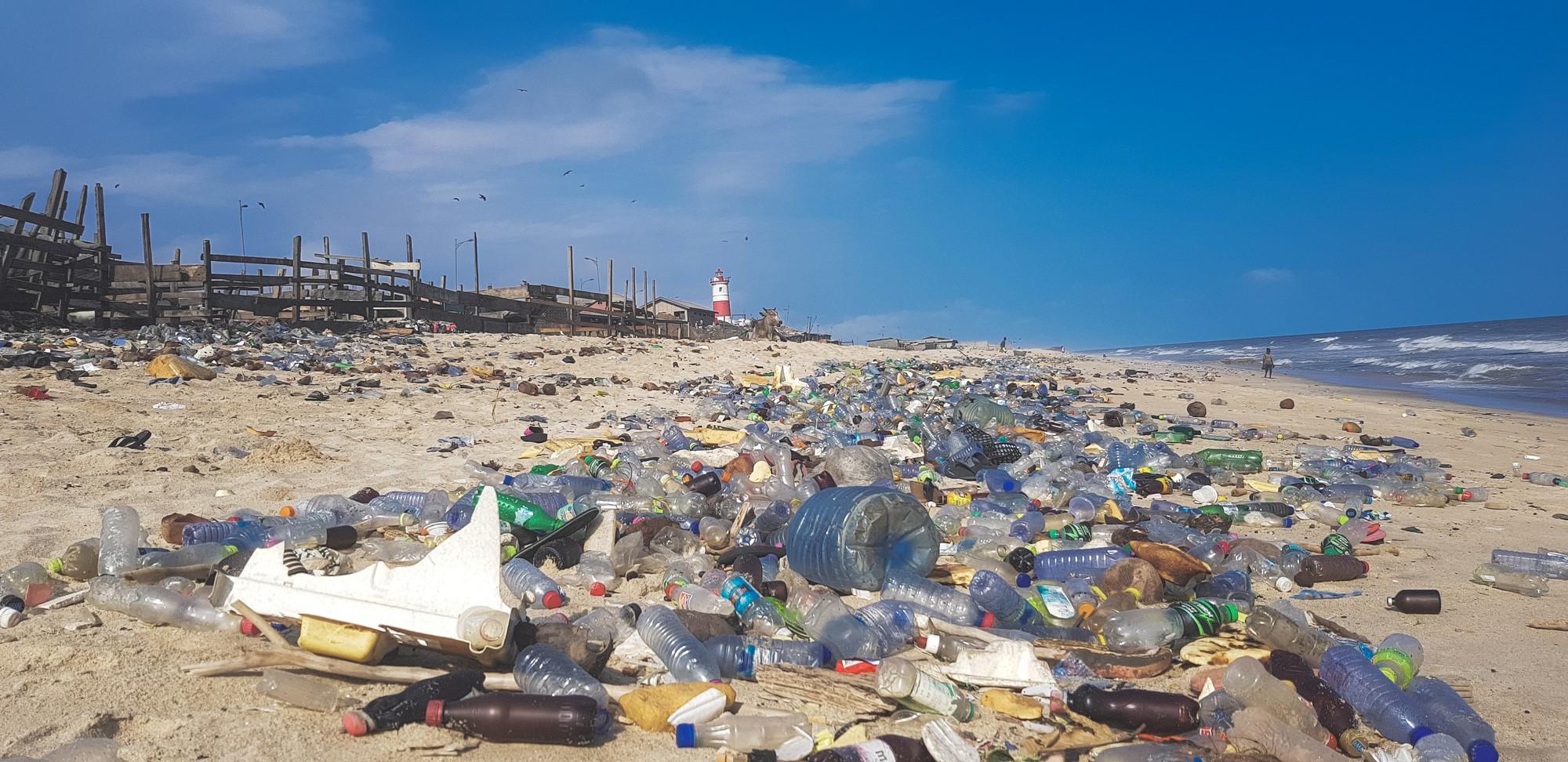 Rác thải nhựa: Thứ chúng ta chỉ dùng vài phút ngắn ngủi nhưng lại là bi kịch nghìn năm của mọi sinh vật biển - Ảnh 5.
