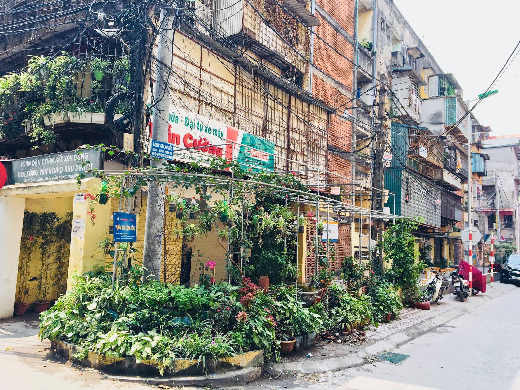 Không được người dân chăm sóc, những vườn hoa sinh ra từ bãi rác ở Hà Nội đã héo úa: Cần lắm sự chung tay của cả cộng đồng! - Ảnh 17.
