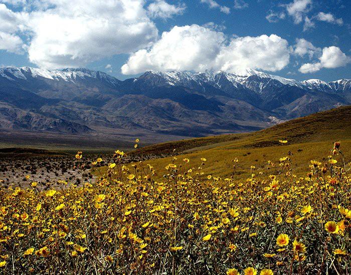 Thung lũng Tử thần nóng nhất thế giới đột nhiên mọc ra một cái hồ tuyệt đẹp - chuyện gì đang xảy ra? - Ảnh 3.
