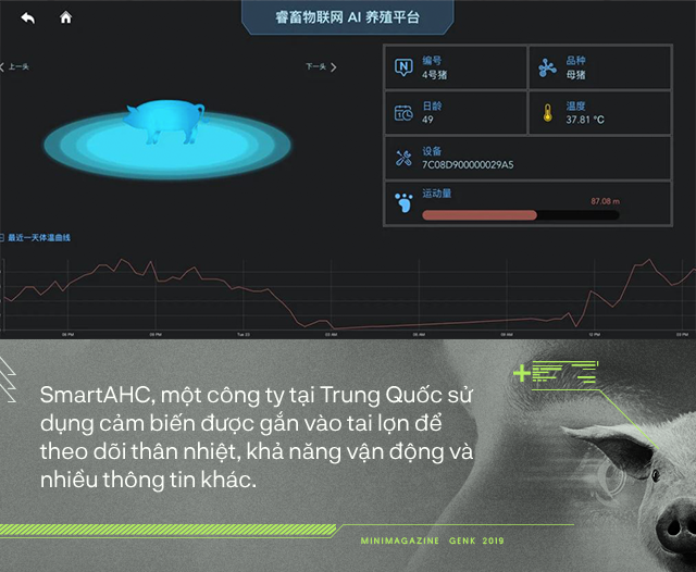 Trung Quốc chống lại dịch tả lợn châu Phi bằng công nghệ nhận diện mặt lợn như thế nào? - Ảnh 6.