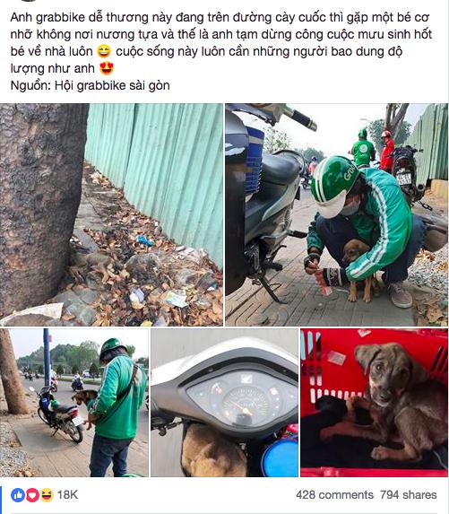 Câu chuyện dễ thương: Chú cún gầy trơ xương nằm bơ vơ bên đường và hành động ấm áp của anh tài xế xe ôm - Ảnh 1.