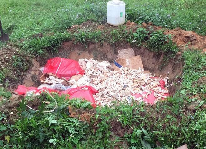 600 kg chân gà đang phân hủy trên đường đi tiêu thụ - Ảnh 2.