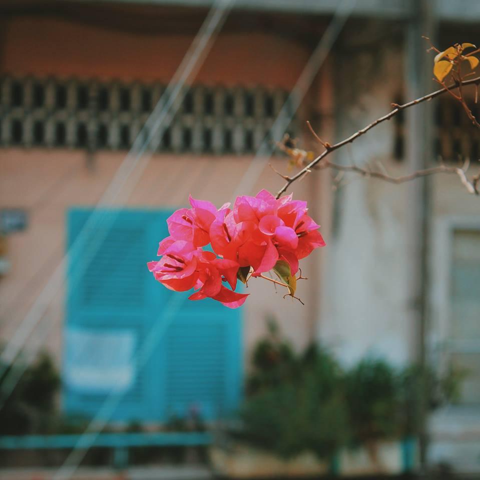 Biết là Sài Gòn có China Town nhưng không ngờ khi lên hình lại đẹp mê ly như thế này! - Ảnh 14.