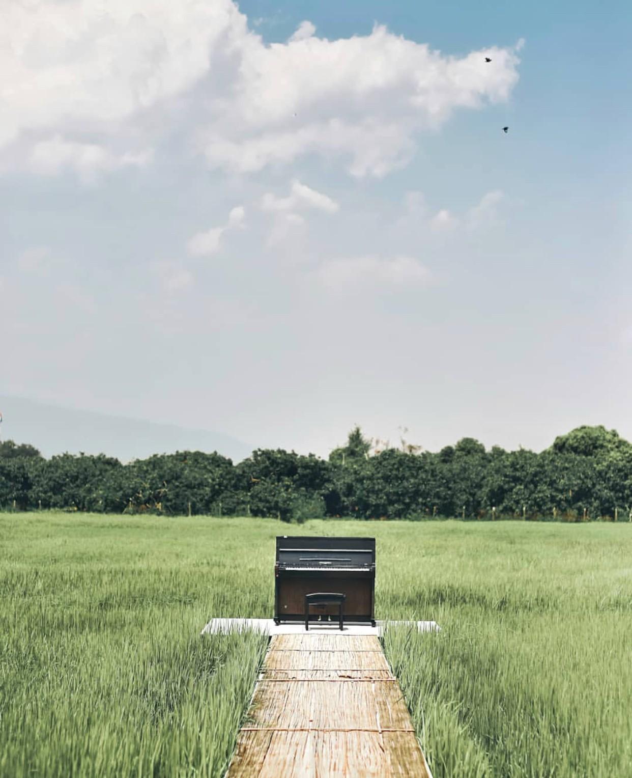 Phát hiện quán cà phê giữa cánh đồng ở Chiangmai (Thái Lan) lên ảnh đẹp không thua gì phim điện ảnh - Ảnh 2.