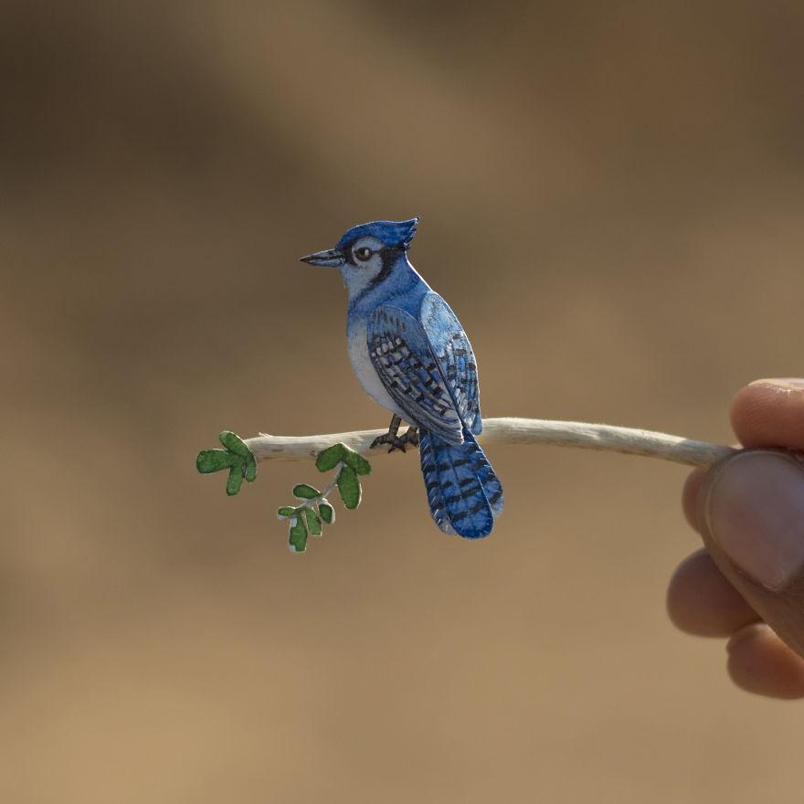 Kinh ngạc trước loạt chim bé bằng móng tay nhưng thông điệp mà chúng truyền tải mới là điều ý nghĩa - Ảnh 1.
