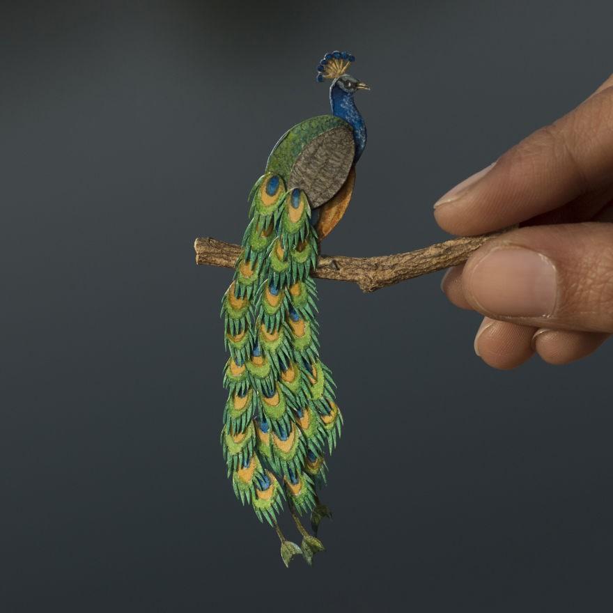 Kinh ngạc trước loạt chim bé bằng móng tay nhưng thông điệp mà chúng truyền tải mới là điều ý nghĩa - Ảnh 4.