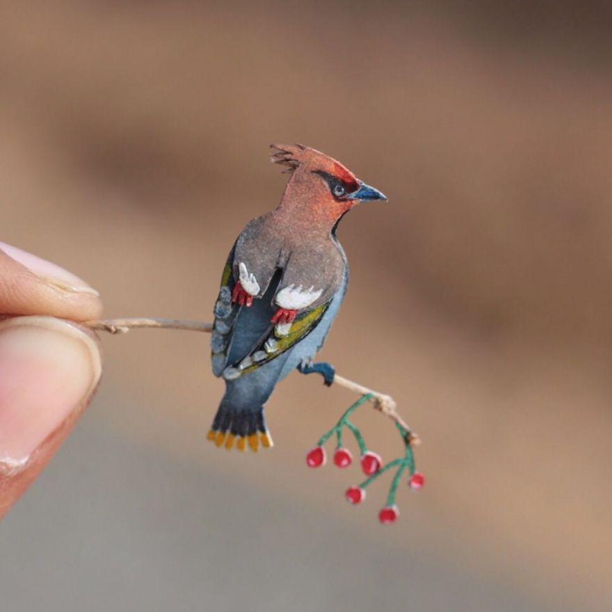 Kinh ngạc trước loạt chim bé bằng móng tay nhưng thông điệp mà chúng truyền tải mới là điều ý nghĩa - Ảnh 8.