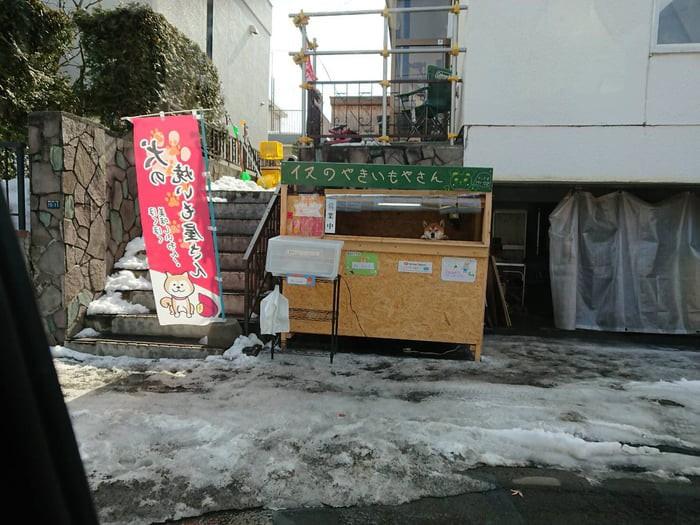 Chú chó shiba quản lý quầy khoai lang nướng ở Nhật khiến 5000 anh em mong mỏi được diện kiến một lần - Ảnh 3.