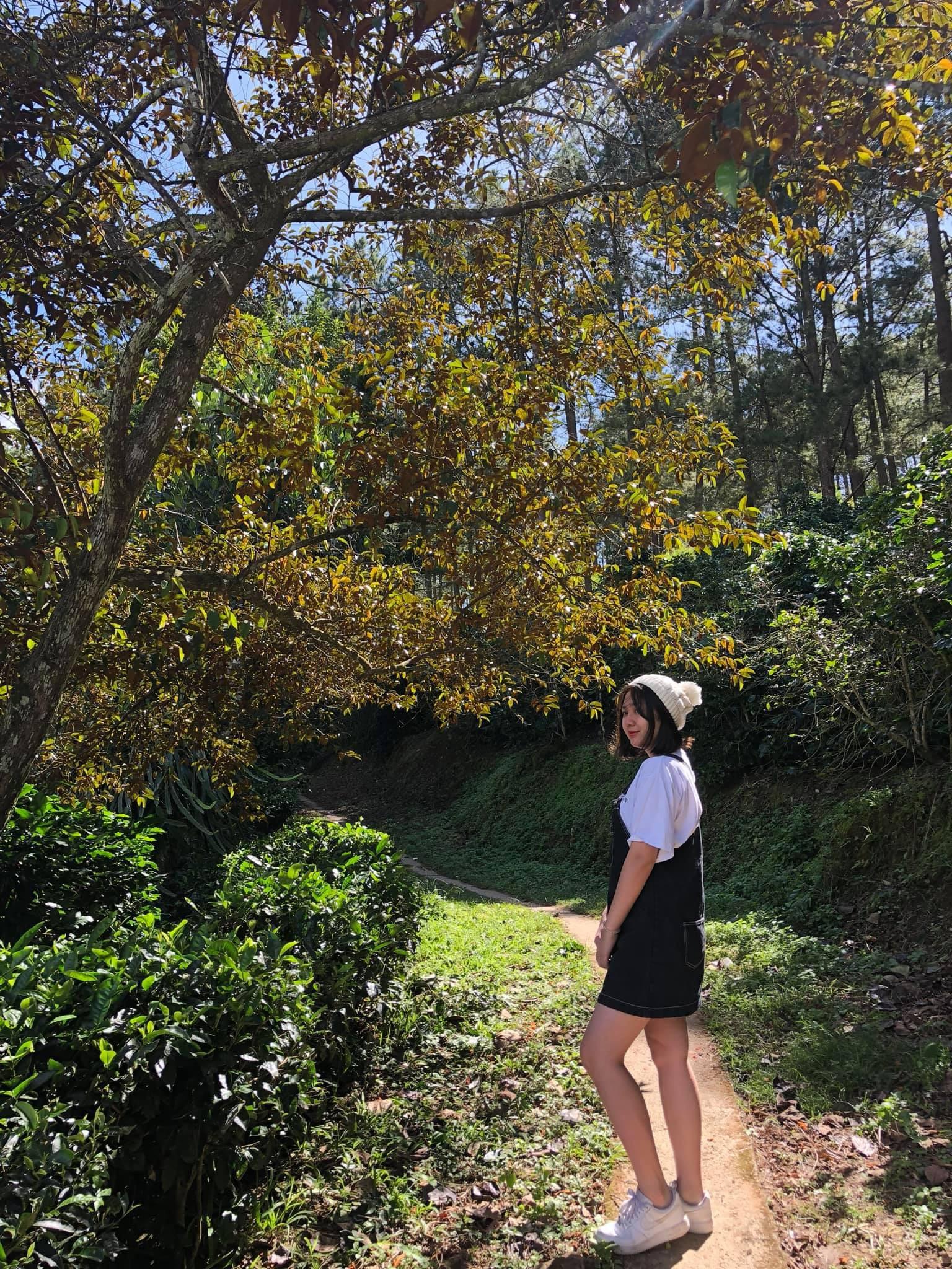 Em gái Bảo Anh lột xác bất ngờ sau 3 năm đi du học Úc, ngày càng xinh đẹp quyến rũ không thua kém chị - Ảnh 16.