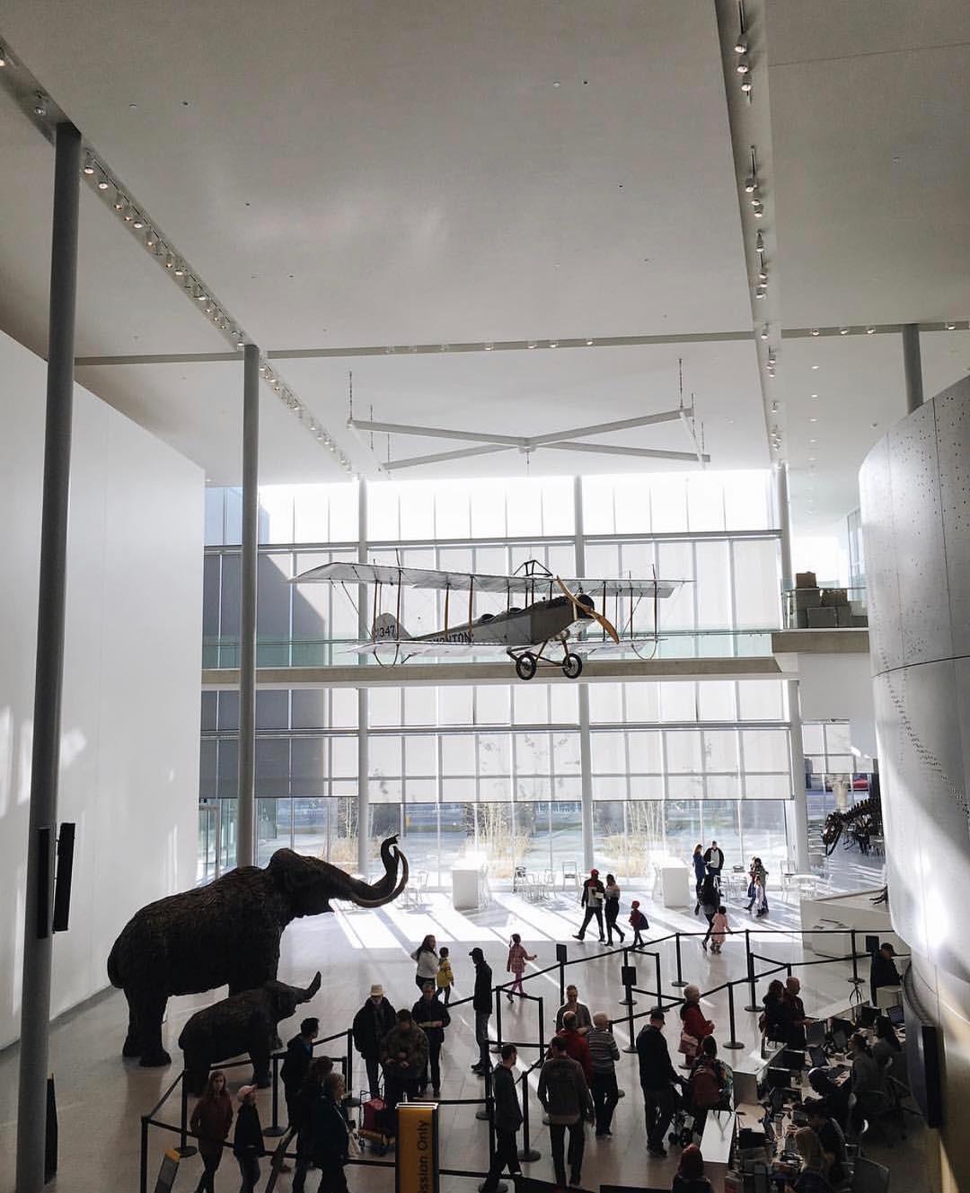 4 bảo tàng được dự đoán sẽ hot nhất năm 2019, dân mê nghệ thuật chắc chắn không thể bỏ qua! - Ảnh 13.