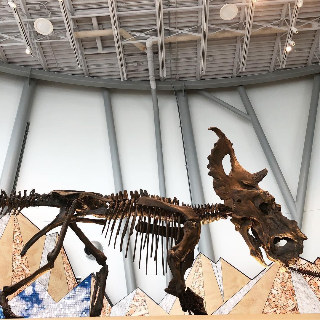 4 bảo tàng được dự đoán sẽ hot nhất năm 2019, dân mê nghệ thuật chắc chắn không thể bỏ qua! - Ảnh 15.
