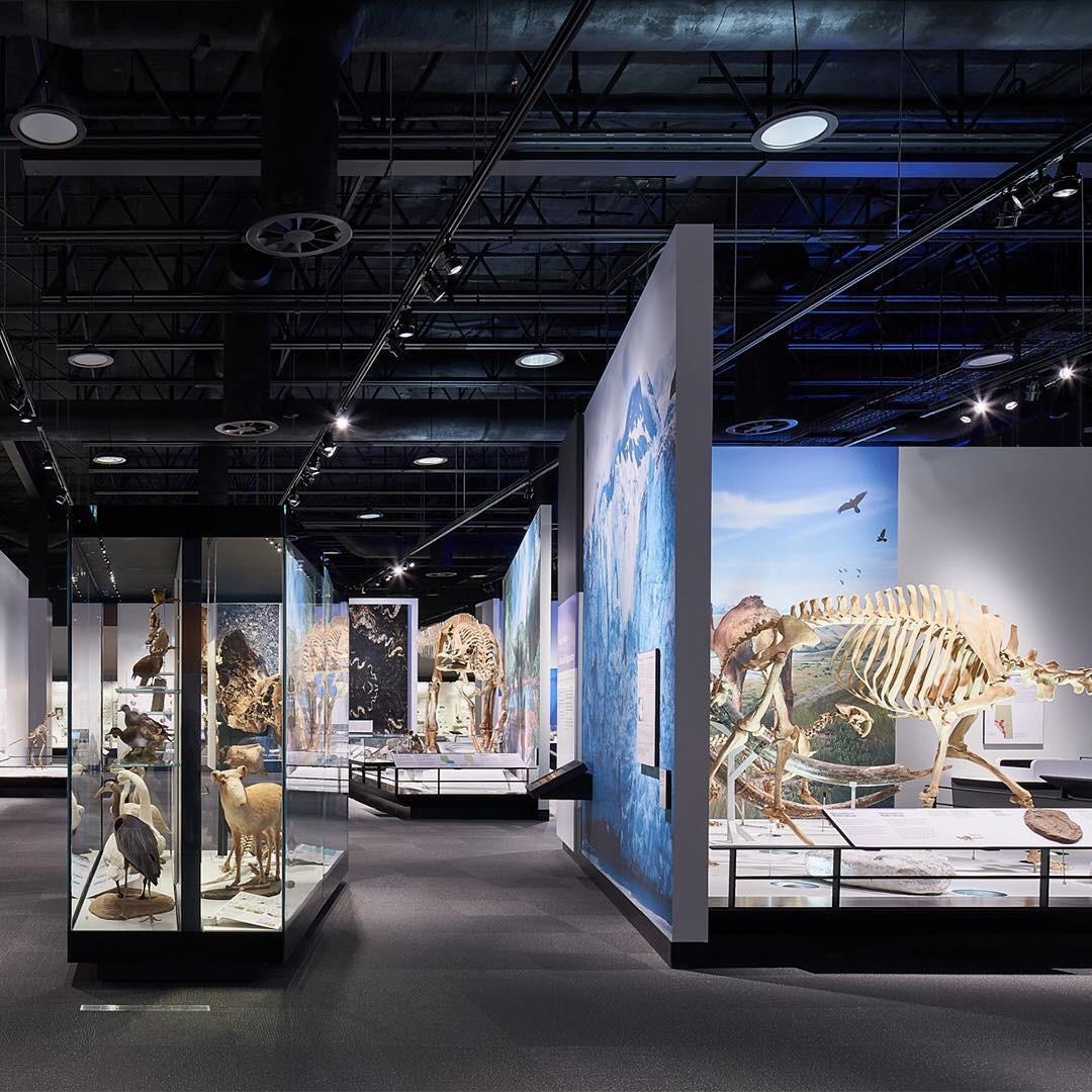 4 bảo tàng được dự đoán sẽ hot nhất năm 2019, dân mê nghệ thuật chắc chắn không thể bỏ qua! - Ảnh 11.