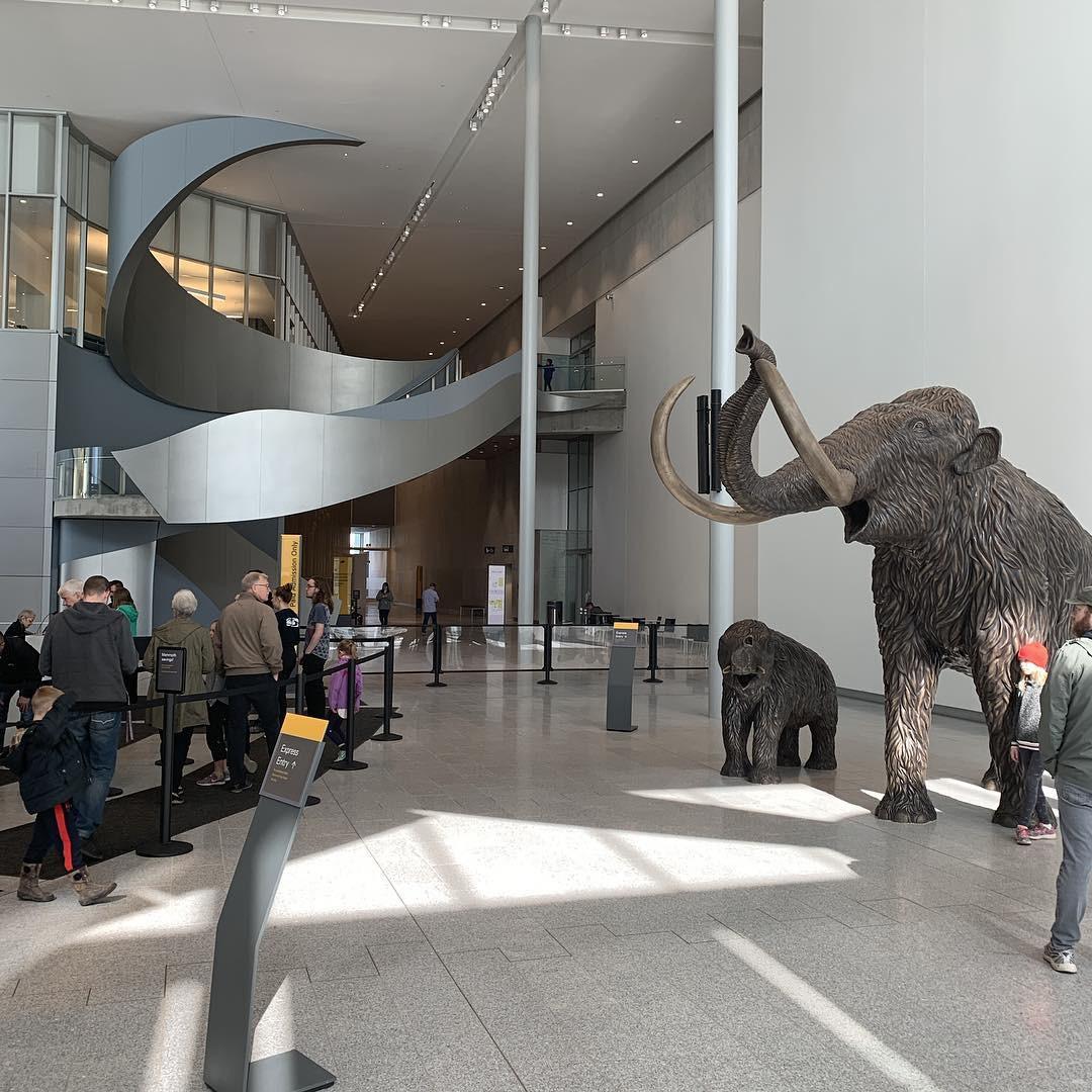 4 bảo tàng được dự đoán sẽ hot nhất năm 2019, dân mê nghệ thuật chắc chắn không thể bỏ qua! - Ảnh 14.