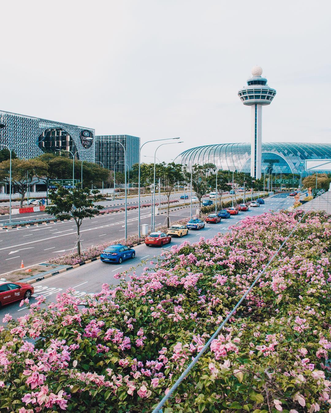 Há hốc mồm với không gian siêu hoàng tráng bên trong sân bay được bình chọn tốt nhất thế giới suốt 7 năm liền - Ảnh 11.