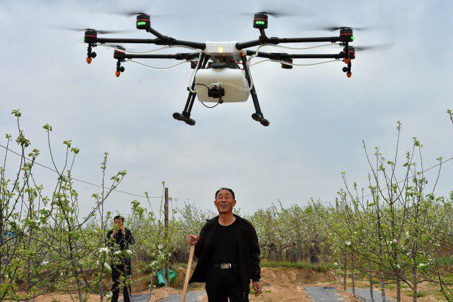 Nghề hot ở nông thôn Trung Quốc: Làm phi công lái drone, mỗi tháng kiếm hơn 180 triệu đồng - Ảnh 2.
