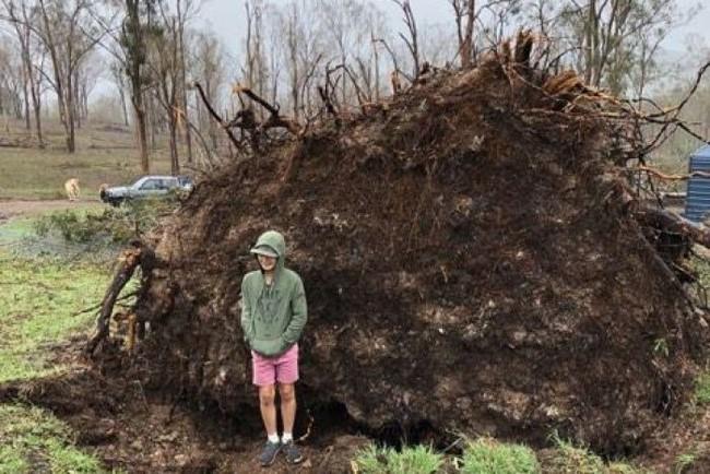 Chuyện kinh dị có thật: Cậu bé hí hửng chụp ảnh gần gốc cây cổ thụ đã đổ, cây bất thình lình bật dậy nuốt chửng - Ảnh 1.