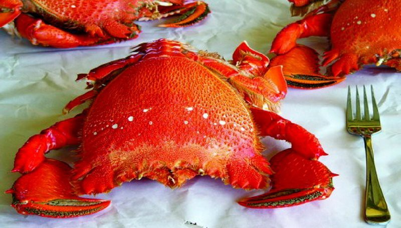 Phú Quốc có cửu độc đặc sản, nghe hơi sợ nhưng hoá ra toàn món ngon - Ảnh 4.