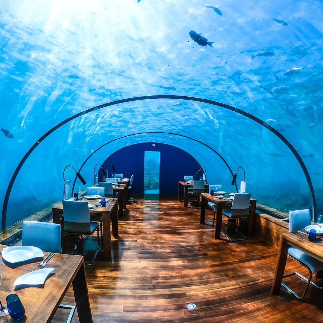 Loá mắt với khách sạn triệu đô dưới đáy biển Ấn Độ Dương mà chỉ giới siêu giàu mới đủ tiền thuê - Ảnh 9.