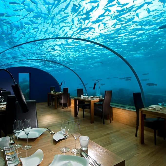 Loá mắt với khách sạn triệu đô dưới đáy biển Ấn Độ Dương mà chỉ giới siêu giàu mới đủ tiền thuê - Ảnh 4.