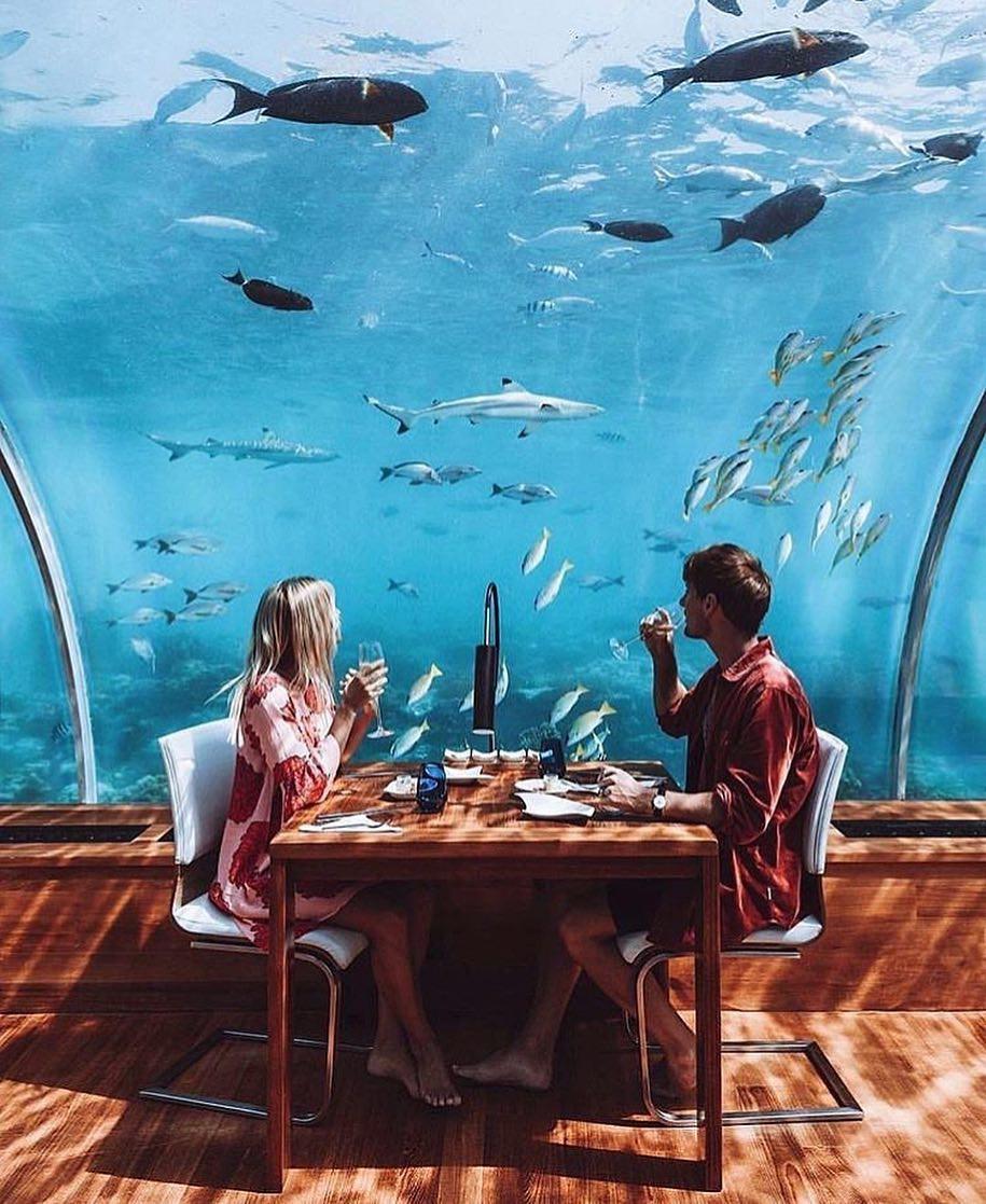 Loá mắt với khách sạn triệu đô dưới đáy biển Ấn Độ Dương mà chỉ giới siêu giàu mới đủ tiền thuê - Ảnh 12.