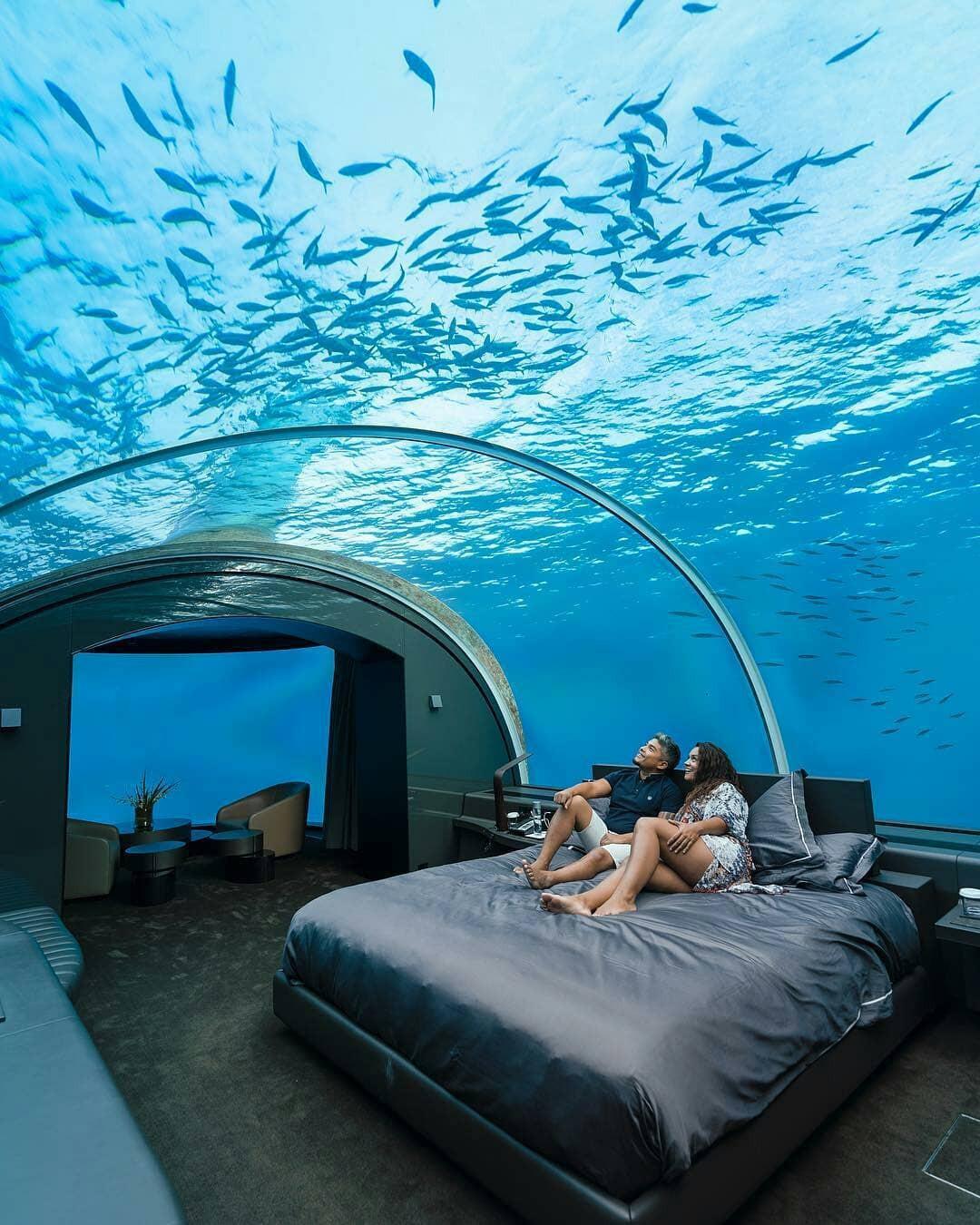 Loá mắt với khách sạn triệu đô dưới đáy biển Ấn Độ Dương mà chỉ giới siêu giàu mới đủ tiền thuê - Ảnh 2.