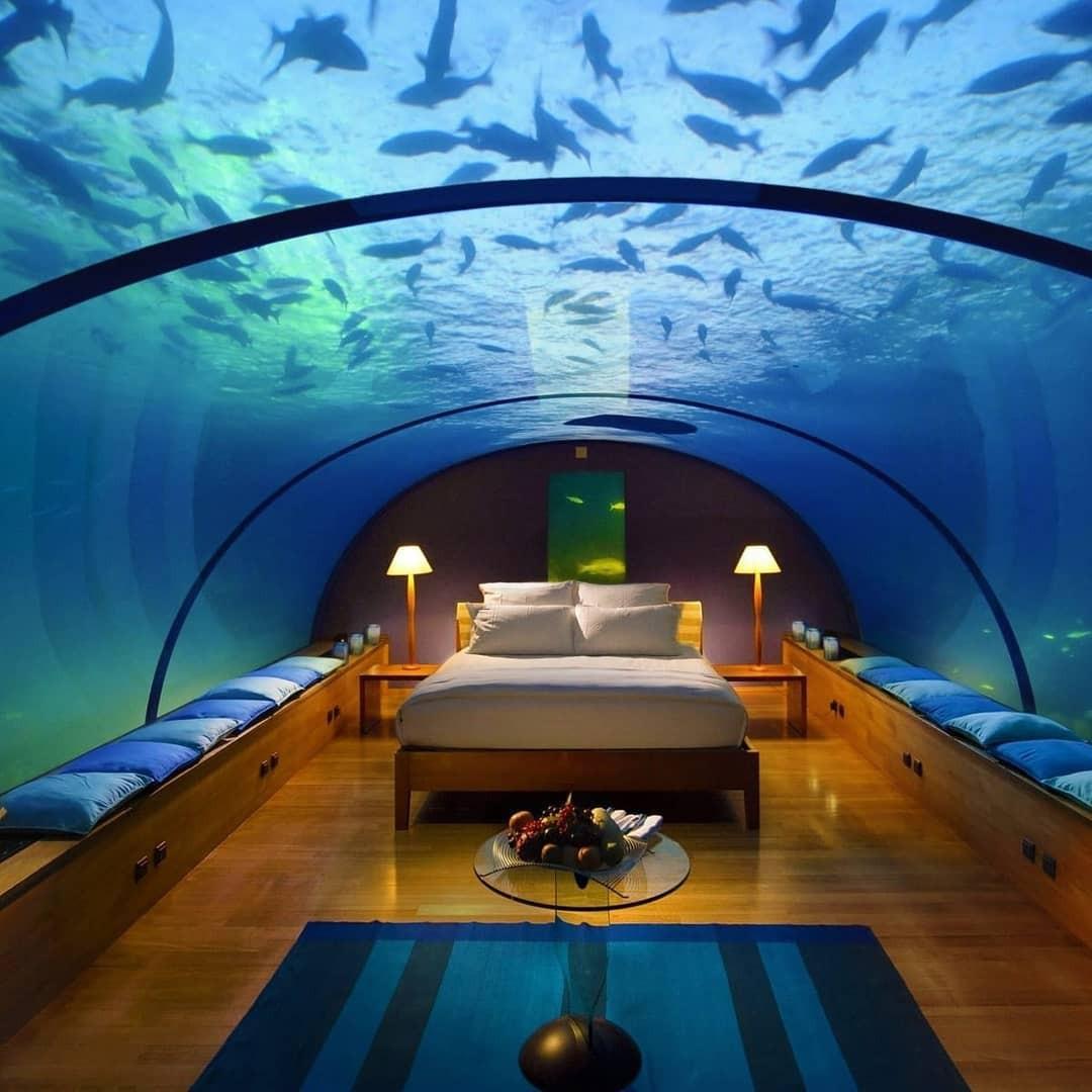Loá mắt với khách sạn triệu đô dưới đáy biển Ấn Độ Dương mà chỉ giới siêu giàu mới đủ tiền thuê - Ảnh 6.